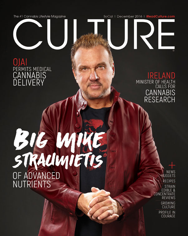 Big-Mike-CULTURE_CoverWeb
